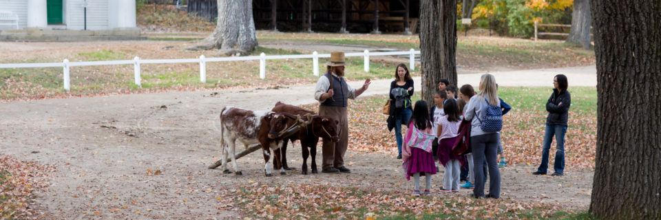 Kids meet a team of Oxen in Training
