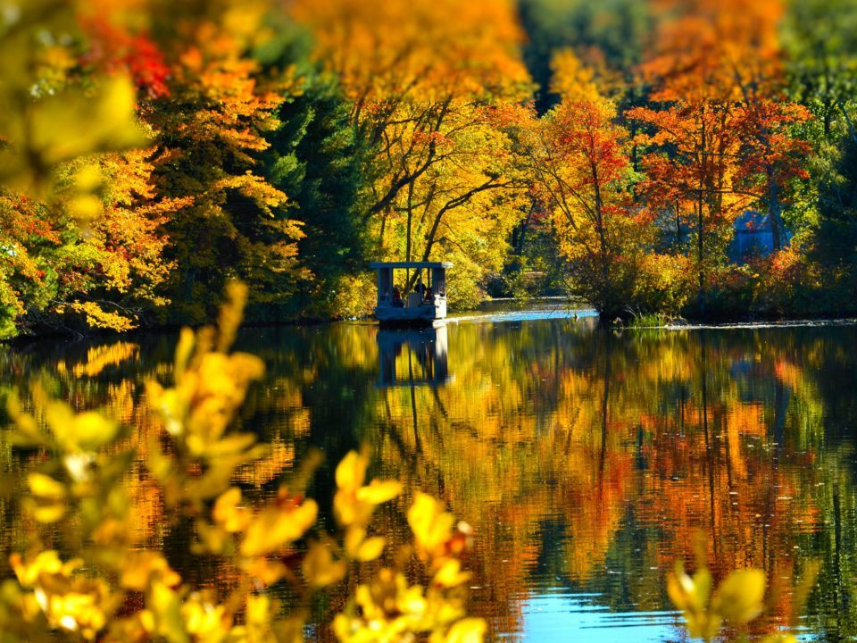 The Riverboat on the water surrounded by fall foliage