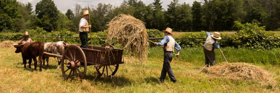 Farmers bringing in the hay at Old Sturbridge Village