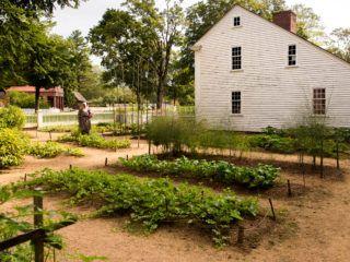 The Parsonage Garden