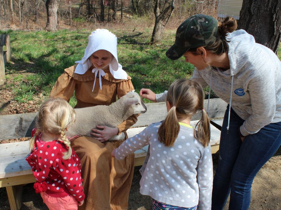 Visitors meet one of the spring lambs