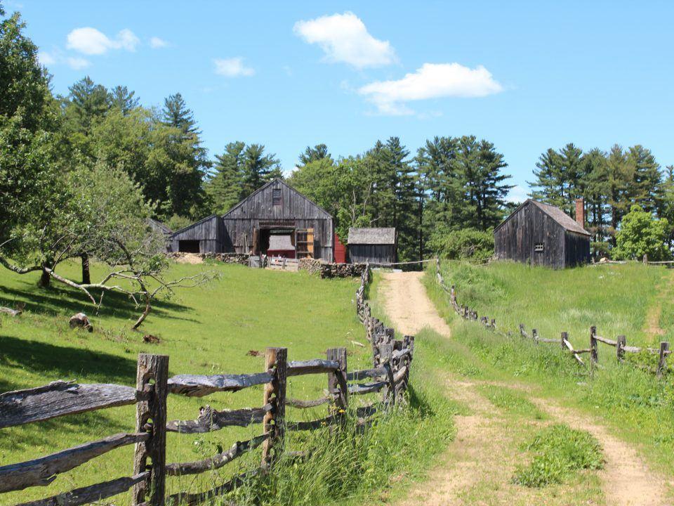 The Freeman Farm on a Sunny Day