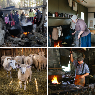 Several photos from the Village: Guests visiting the Maple Sugar Shack, a woman cooks over the hearth, sheep, blacksmith at work
