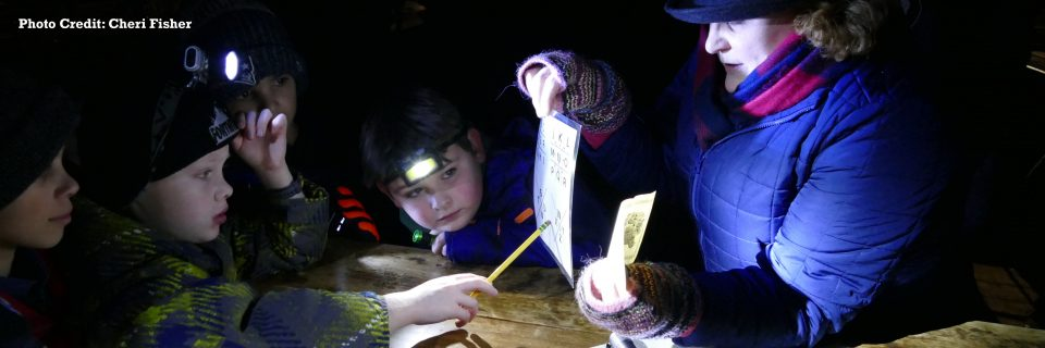 Kids looking at clues