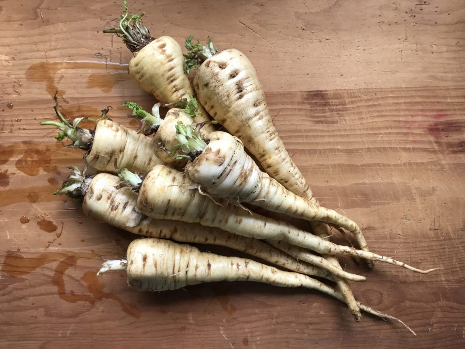 Parsnips on board