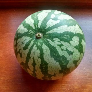 Red Seeded Citron Melon