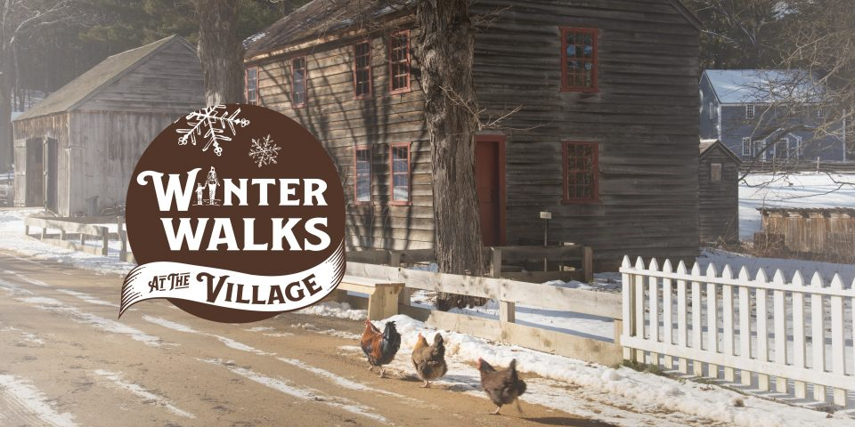 Winter Walks at the Village
