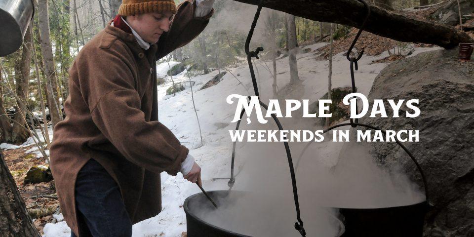 Maple Days